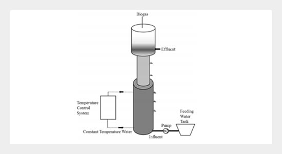Biogas Emission from an Anaerobic Reactor