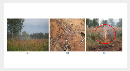 Aerosol Emissions from Long-lasting Smoldering of Boreal Peatlands: Chemical Composition, Markers, and Microstructure