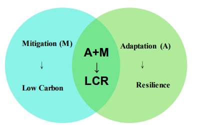 Fig. 3. Low carbon and resilience interaction.