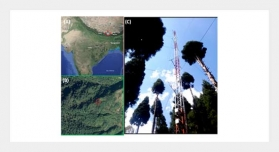 Biosphere Atmosphere Exchange of CO2, H2O Vapour and Energy during Spring over a High Altitude Himalayan Forest in Eastern India