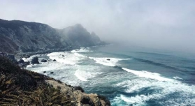 Fogs and Air Quality on the Southern California Coast