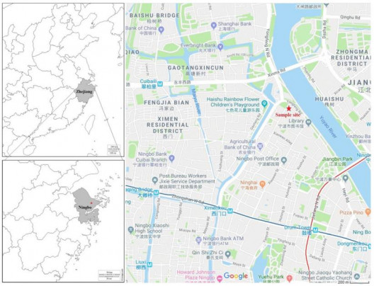 Fig. 1. PM2.5 sampling site (the red star) in Ningbo.
